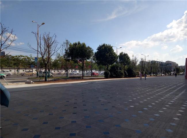 迎宾片区山体修复及景东大道绿化改造工程
