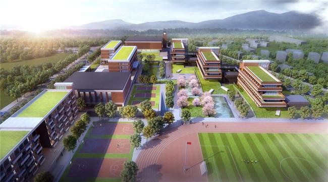 新区重点高中